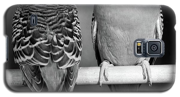 1960s Pair Of Parakeets Perched Galaxy S5 Case
