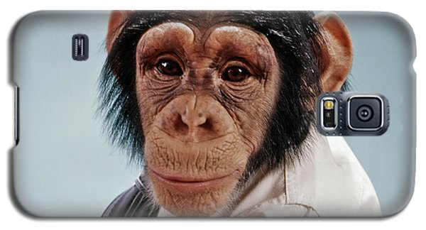 1970s Close-up Face Chimpanzee Looking Galaxy S5 Case