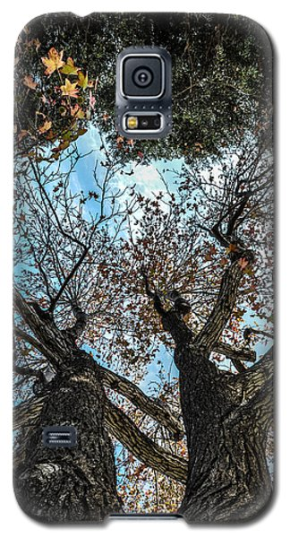 1st Tree Galaxy S5 Case