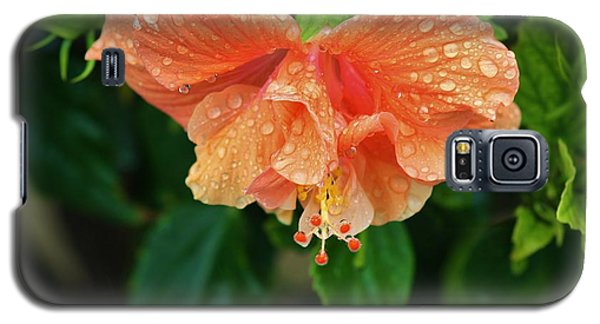 Galaxy S5 Case featuring the photograph After The Rain by Craig Wood
