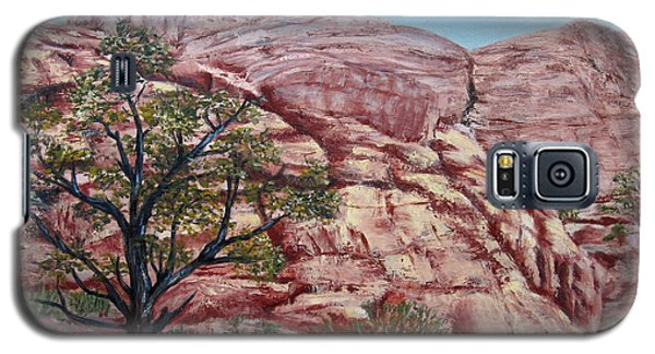 Among The Red Rocks Galaxy S5 Case by Roseann Gilmore