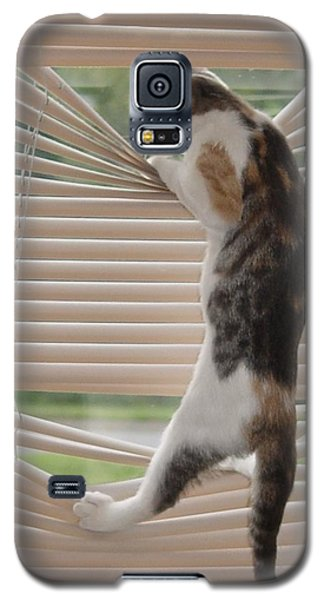 Galaxy S5 Case featuring the photograph Ana Lucia Levelor by Elizabeth Sullivan