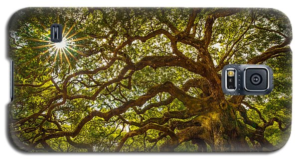 Galaxy S5 Case featuring the photograph Angel Oak by Serge Skiba