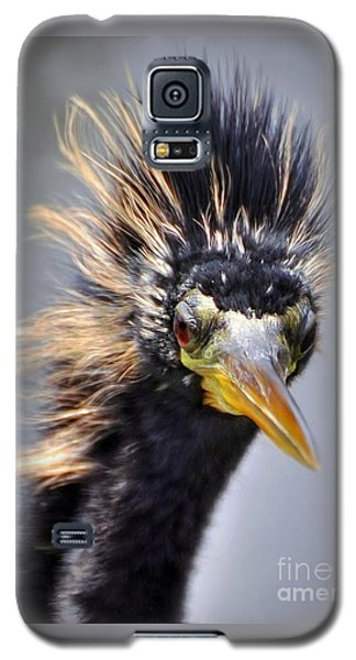 Galaxy S5 Case featuring the photograph Anhinga  by Savannah Gibbs