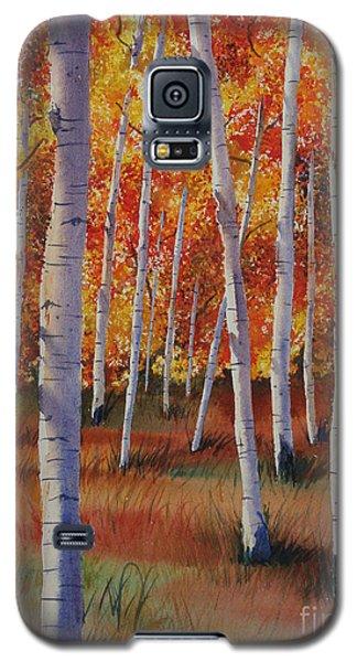 Aspen Forest Galaxy S5 Case
