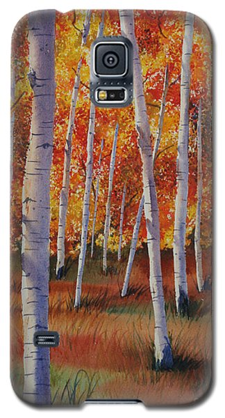 Aspen Forest Galaxy S5 Case