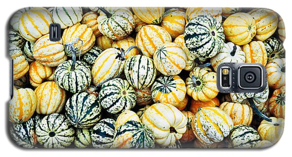 Autumn Gourds Galaxy S5 Case by Crystal Hoeveler
