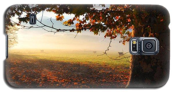 Autumn Tree Galaxy S5 Case