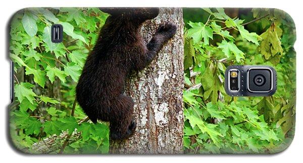 Baby Bear Galaxy S5 Case