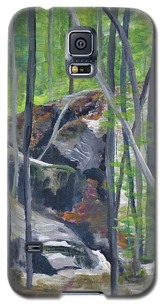 Backyard At Sussex 2 Galaxy S5 Case