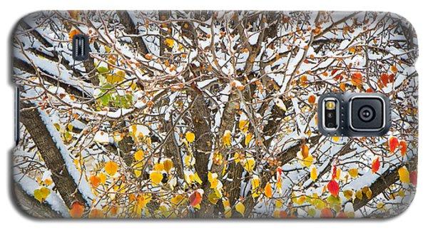 Battle Of The Seasons Galaxy S5 Case by Annette Hugen