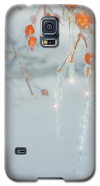 Before The Thaw Galaxy S5 Case by Sandi Mikuse