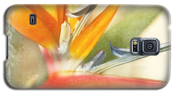 Bird Of Paradise - Strelitzea Reginae - Tropical Flowers Of Hawaii Galaxy S5 Case by Sharon Mau