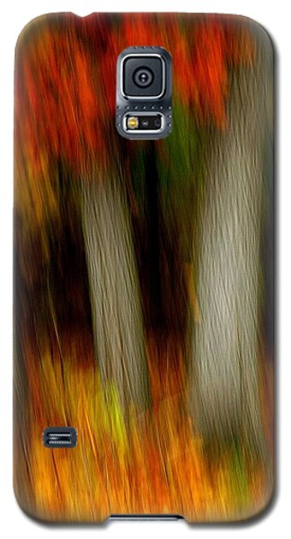 Blazing In The Woods Galaxy S5 Case