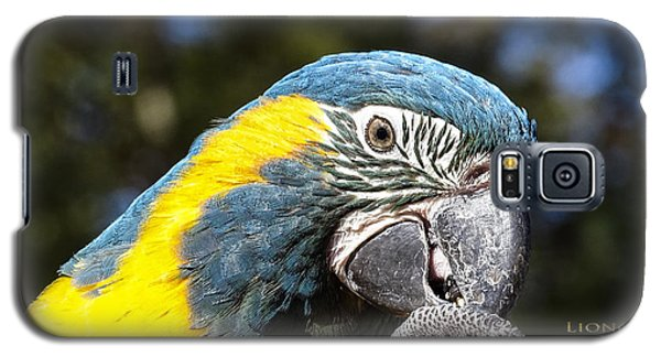 Galaxy S5 Case featuring the photograph Blue Throat Macaw by Melissa Messick