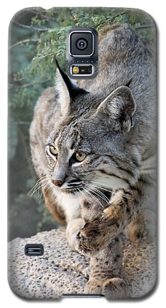 I Was Grooming Galaxy S5 Case
