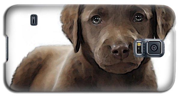 Chessie Galaxy S5 Case