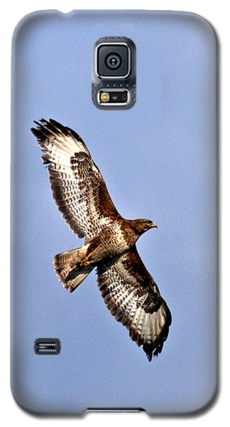 Galaxy S5 Case featuring the photograph Common Buzzard by Paul Scoullar