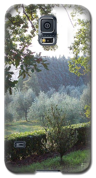 Dawn In Loppiano Galaxy S5 Case