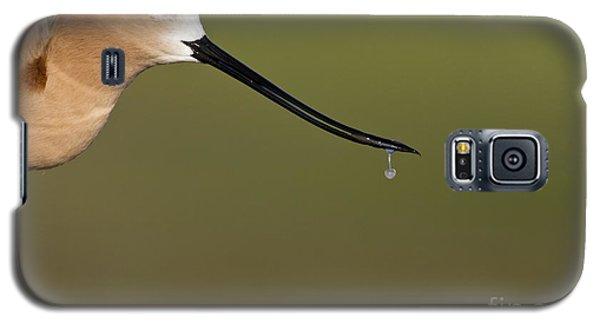 Drippy Galaxy S5 Case by Bryan Keil