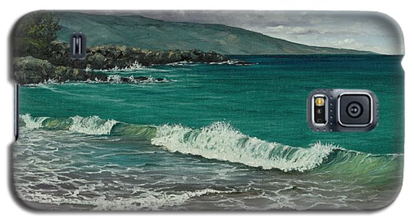 Galaxy S5 Case featuring the painting Dt Fleming Beach by Darice Machel McGuire