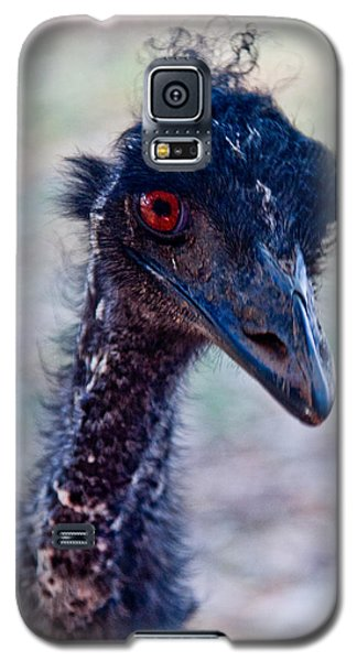Emu Galaxy S5 Case by Carole Hinding