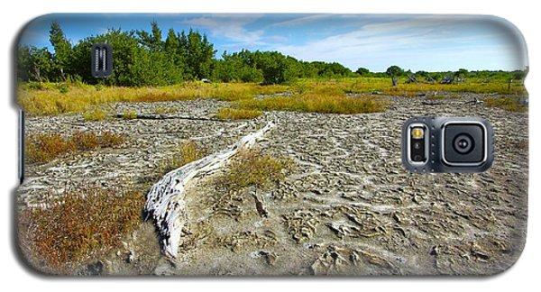 Everglades Coastal Prairies Galaxy S5 Case