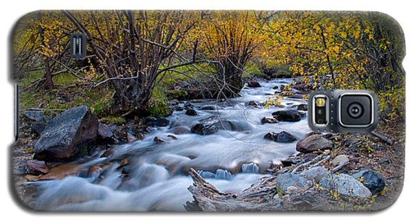 Fall At Big Pine Creek Galaxy S5 Case