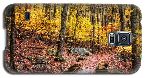Fall Covered Tracks Galaxy S5 Case