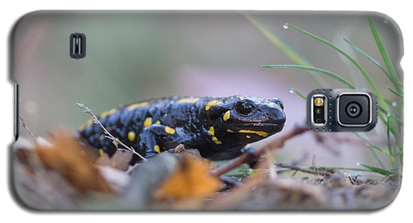 Fire Salamander - Salamandra Salamandra Galaxy S5 Case by Jivko Nakev