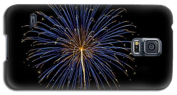 Fireworks Bursts Colors And Shapes Galaxy S5 Case