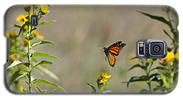 Galaxy S5 Case featuring the photograph Flight Of The Monarch by Thomas Bomstad