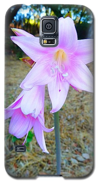 Galaxy S5 Case featuring the photograph 2 Flowers by Julia Ivanovna Willhite