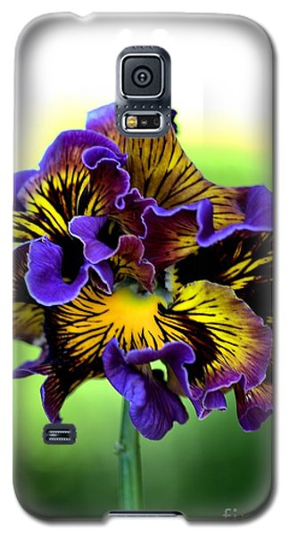 Frilly Pansy Galaxy S5 Case by Joy Watson