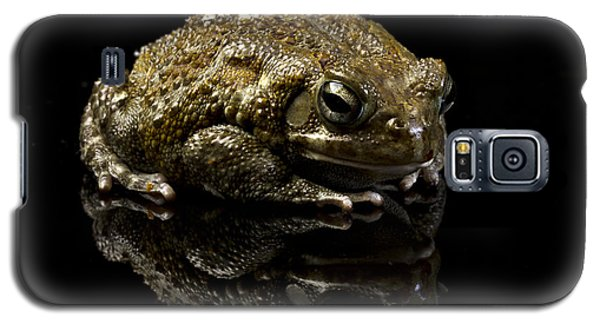 Galaxy S5 Case featuring the photograph Frog by Gunnar Orn Arnason