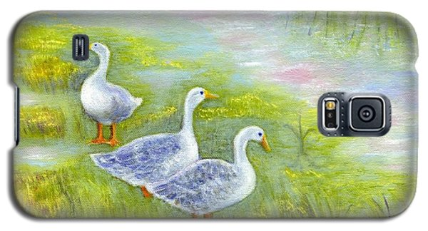 Geese At Sunset Galaxy S5 Case