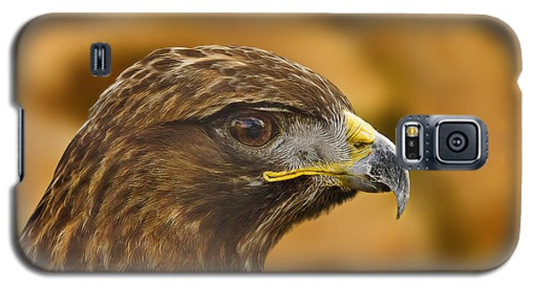 Galaxy S5 Case featuring the photograph Golden Eagle  by Brian Cross