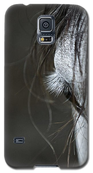 Galaxy S5 Case featuring the photograph Gracie by Joan Davis