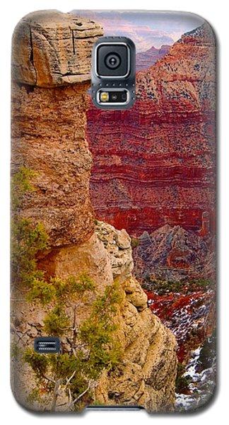 Grand Canyon Arizona Galaxy S5 Case by Bob Pardue