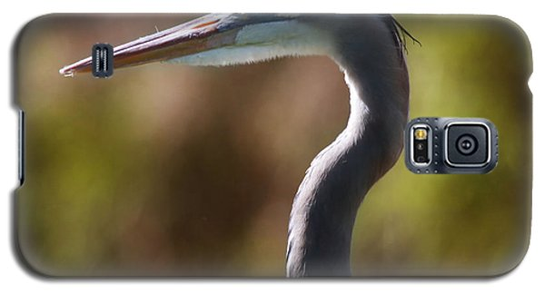 Great Blue Heron Galaxy S5 Case by Joseph G Holland