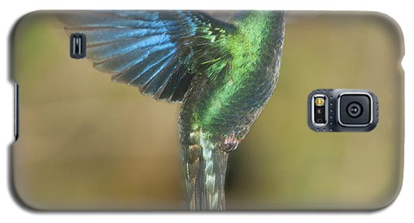 Galaxy S5 Case featuring the photograph Great Sapphirewing Hummingbird by Dan Suzio