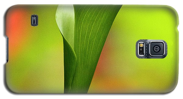 Green Calla Lily Galaxy S5 Case