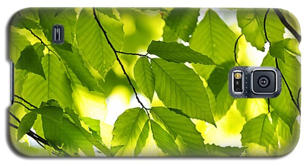 Green Spring Leaves Galaxy S5 Case