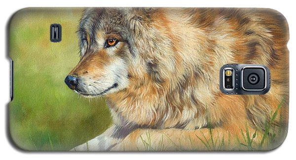 Grey Wolf Galaxy S5 Case by David Stribbling