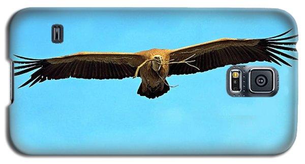 Griffon Vulture In Flight Galaxy S5 Case
