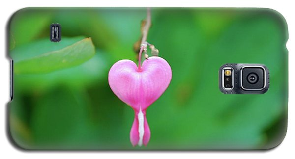 Galaxy S5 Case featuring the photograph Heart On A Vine by Kathy Gibbons
