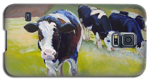 Holstein Friesian Cows Galaxy S5 Case