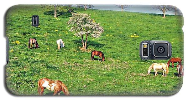 Horse Pasture Galaxy S5 Case