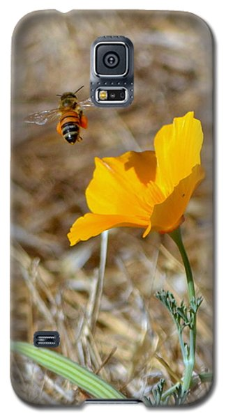 Galaxy S5 Case featuring the photograph Hovering by Rima Biswas