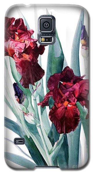 Dark Red Tall Bearded Iris Donatello Galaxy S5 Case